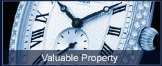 Preferred Personal  Valuable Property  Insurance